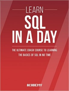 Learn SQL In A Day book
