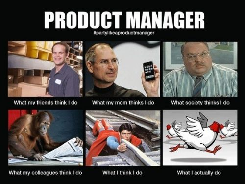 What a product manager does